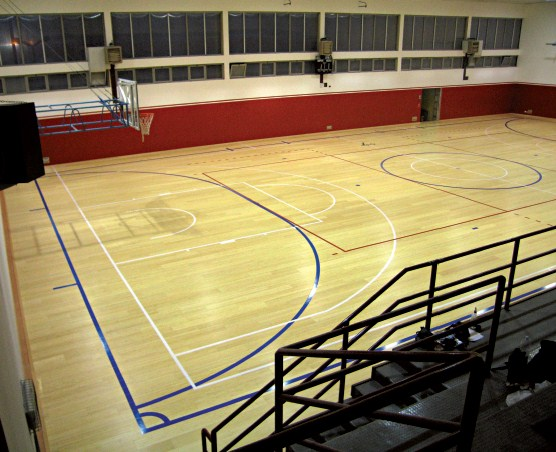 sports floors for gym italy dalla riva