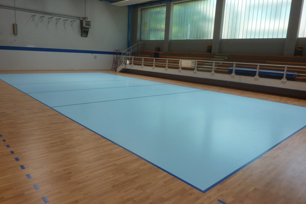 For the field of volleyball was chosen an impactful light blue