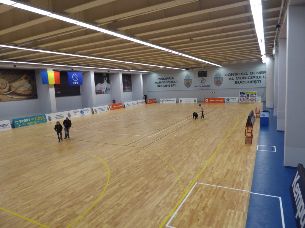 Dalla Riva Sportfloors greets Romania and its capital, leaving to one of his main sports facilities a removable sports floor able to foster extraordinary sports performances