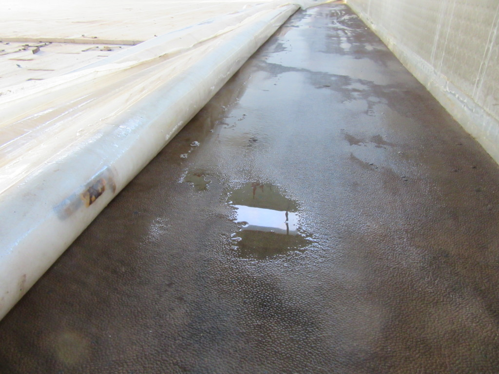 Even traces of water from a distance of a lot of time on sports facility bottom