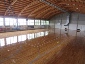 The skating treatment as that performed by Dalla Riva in the gymnasium of Trieste does not compromise the traditional activities such as basketball or volleyball
