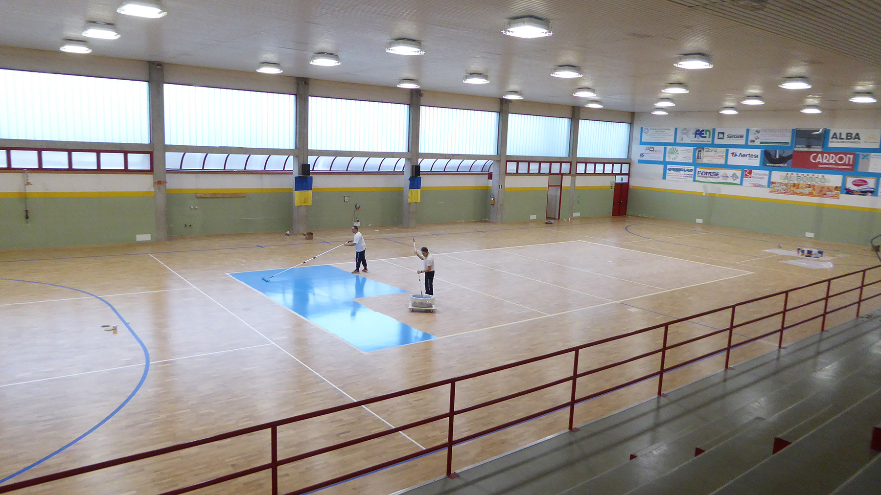 The coloring of the volleyball court